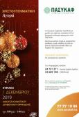 Χριστουγεννιάτικη Αγορά ΠΑΣΥΚΑΦ